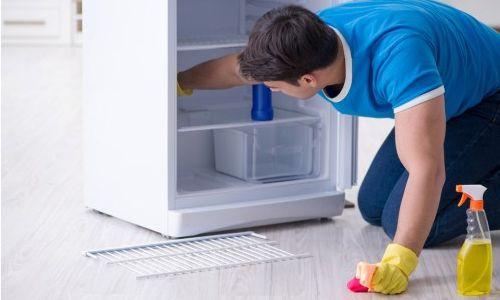 Cara Perawatan Kulkas 2 Pintu yang Benar