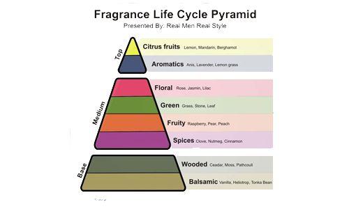 Kenali Tingkatan Aroma Notes Sejak Pertama Kali Parfum Disemprotkan