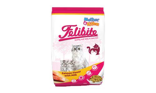 Felibite Mother Kitten